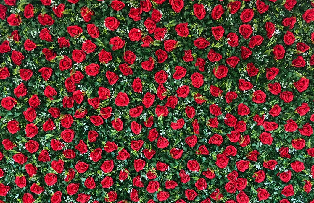 Flower-Wall-Photo-Booth-Red-Event-Photobooth-Hire-Sydney